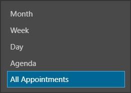 All Appointments Menu Item